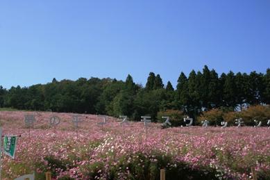 富山30.JPG