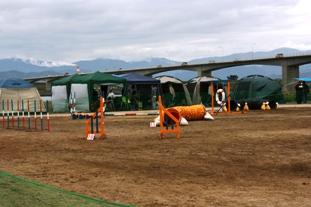 徳島4.JPG