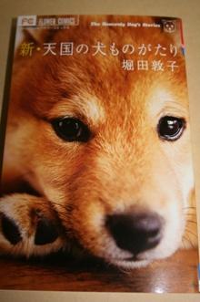犬本.JPG