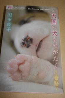 犬本1.JPG